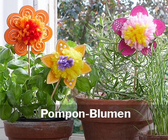 Pompon Blumen