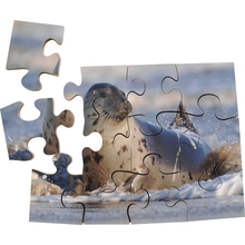 "Puzzle-Set ""Wildtiere"""