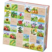 """Memo """"Pflanzen & Blumen"""""""